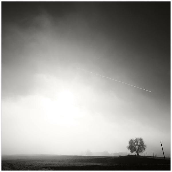 bon hiver X by bliba