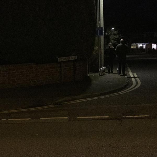 Evening Stroll by Alfie_P