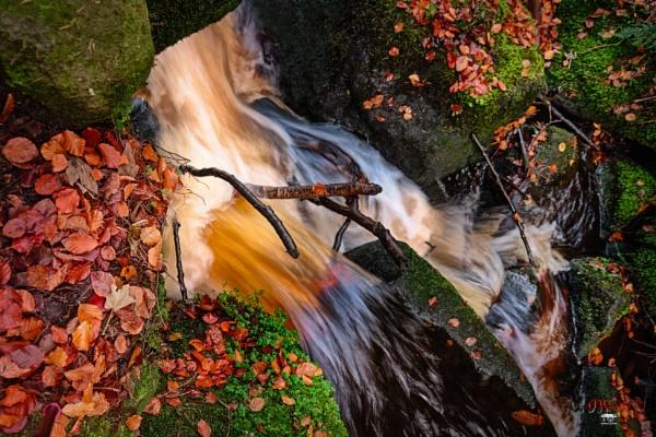 Wyming Brook by DaveShandley