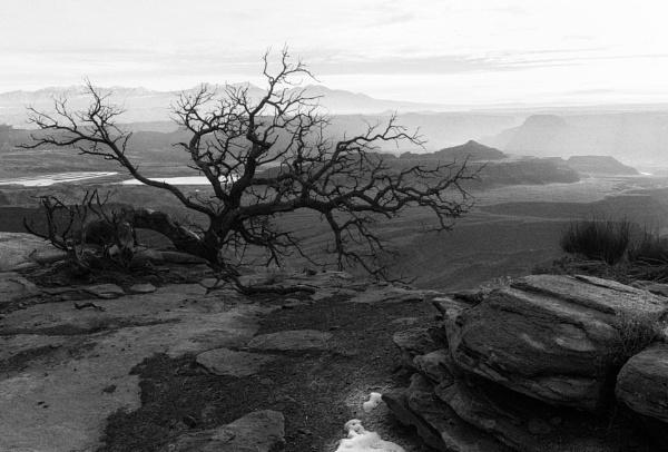 From the ridge by mlseawell
