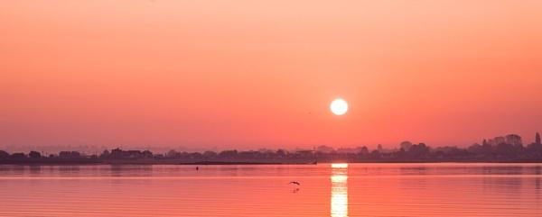 Sunarise - Mersea island by Berniea
