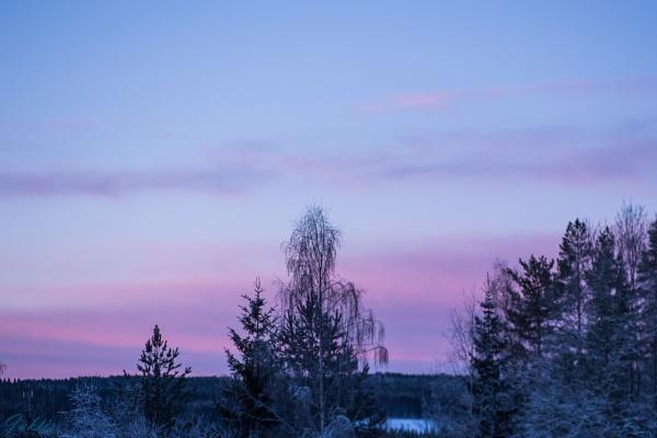 A frosty morning by jaktis