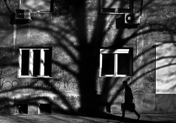 Daily Street V by MileJanjic