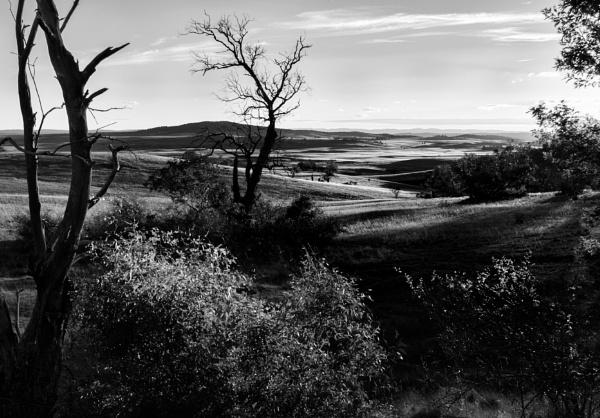 Last Light on the Monaro Plains, New South Wales by BobinAus