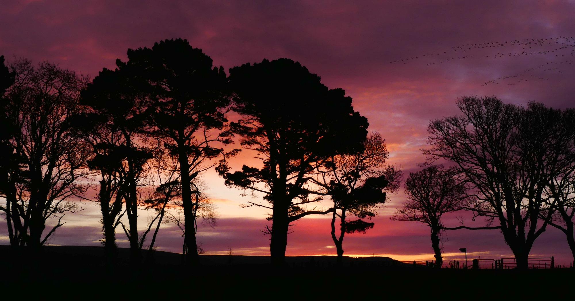 Dawn over Loch Ryan