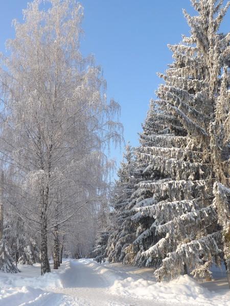 Winter by Alex_r