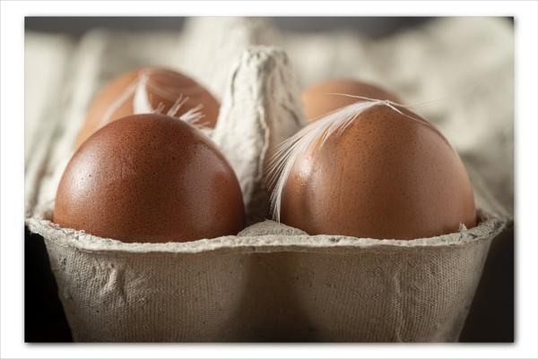 Egg tray by Pamsar