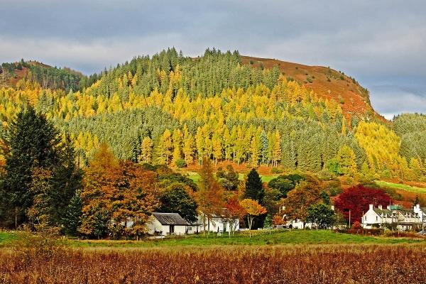 An Autumn Scene by johnsd