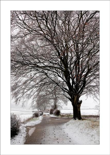 Combs Lane Snow (3) by Steve-T