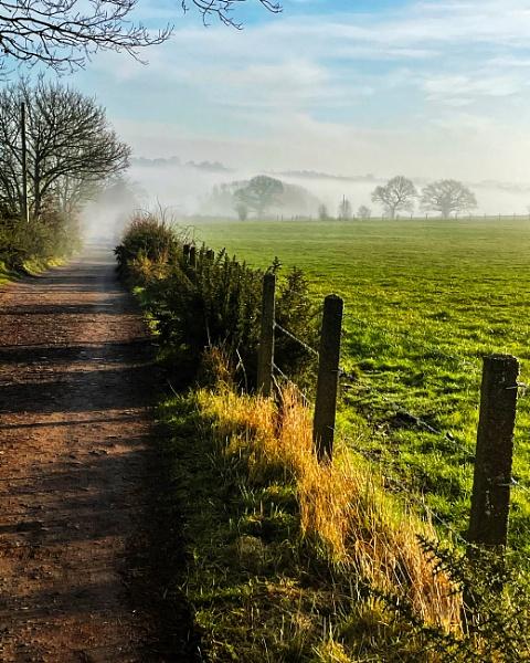 Misty morning by mmart