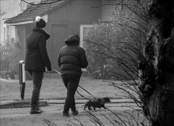 Winter dog walkers 1 by rambler