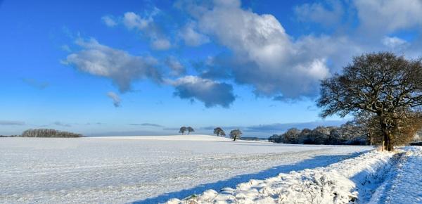 Snowy landscape by probie