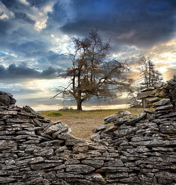 Through The Wall by Rorymac