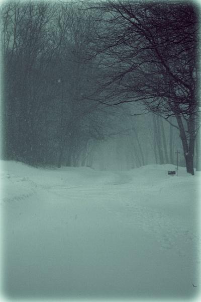Snow Day by Merlin_k