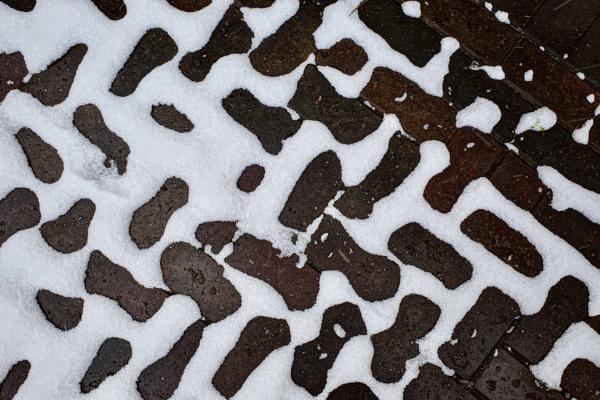 Snow melt by nclark
