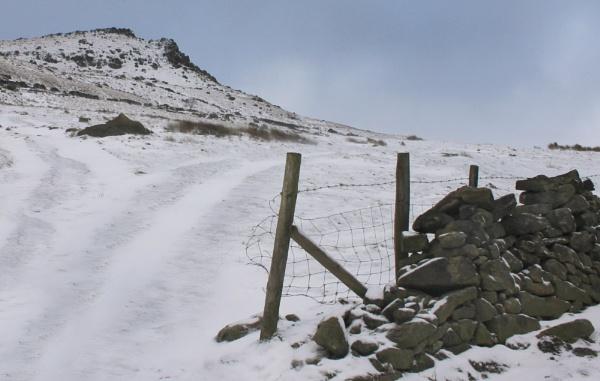 Snow study on Long Lane by michaelfox