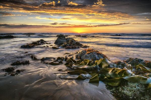 Dawn Awakening by capturingthelight