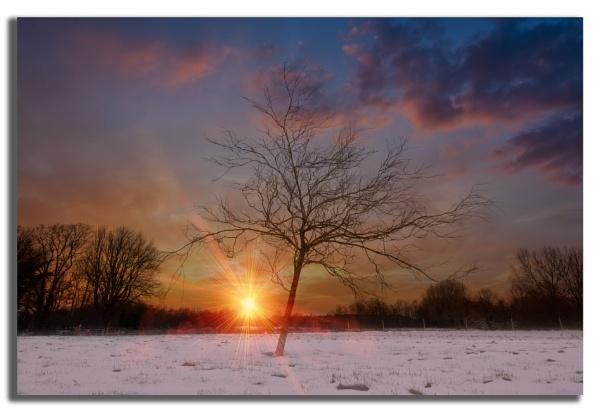 Setting Sun by carper123