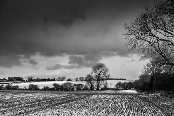 A Winters Walk. by 2479