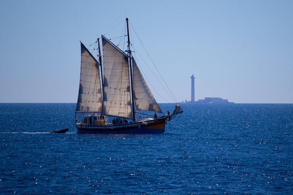Sailing Away by comuirgheasa