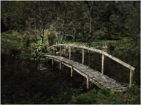 The Bridge by sueriley