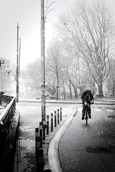 January XX by MileJanjic
