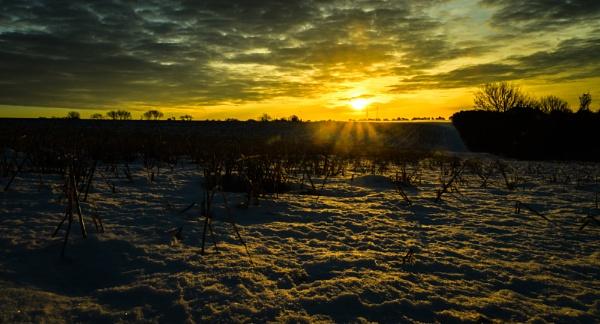 winter morning by mogobiker