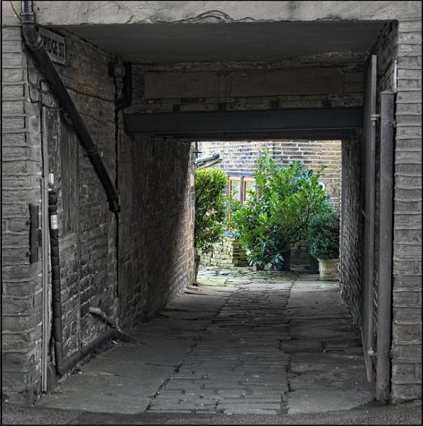 Hidden garden, Yorkshire by BiffoClick