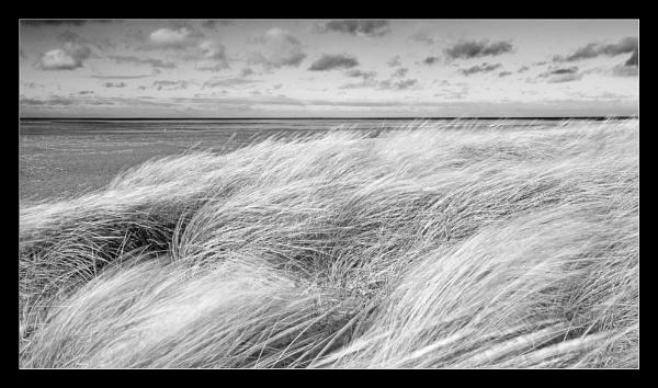 Wind Snettisham beach by Mable