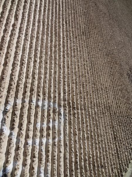 Rough wall by SauliusR