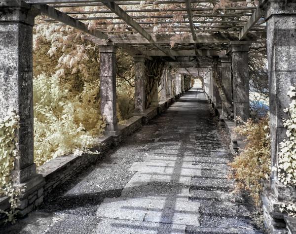 Path by Adee