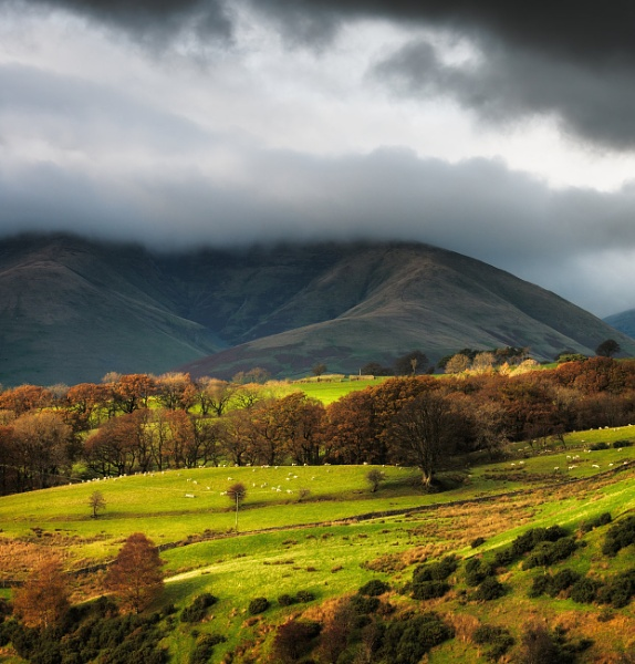 Hill View by chris-p