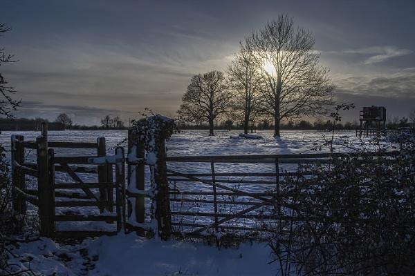 Winter Sunset by cuffit
