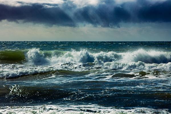 Seascape by Neopolis