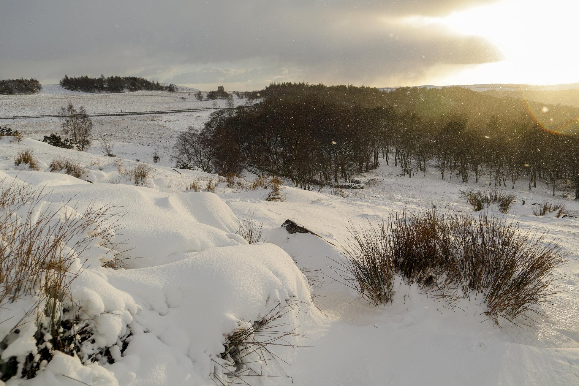 Derbyshire snows