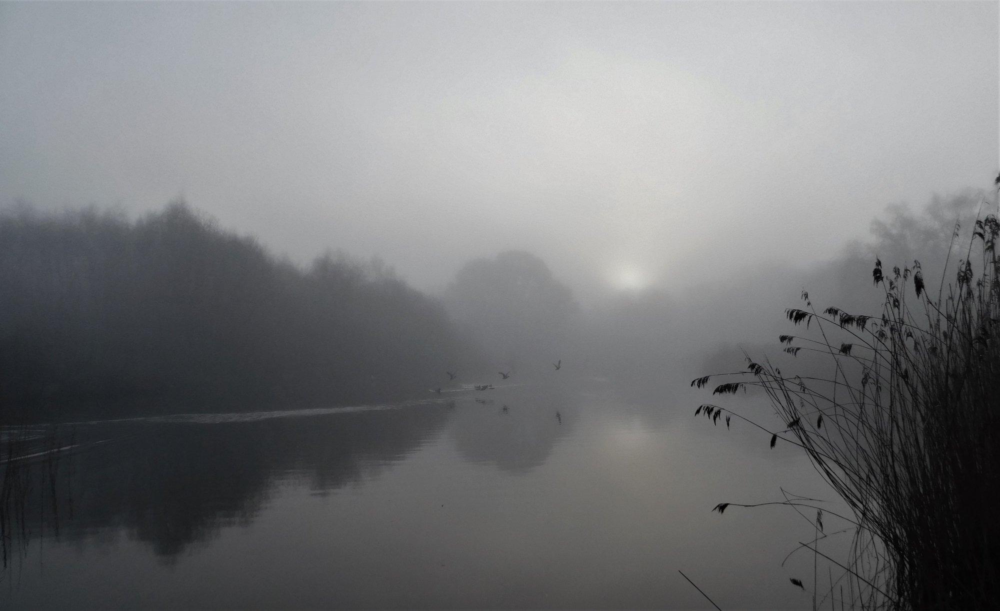 Ornamental lake