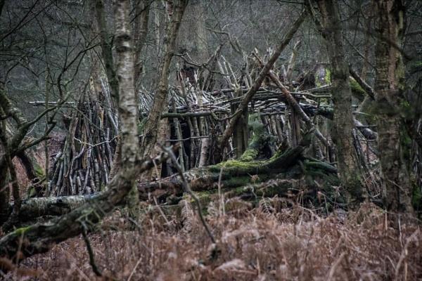 Hidden den by rambler