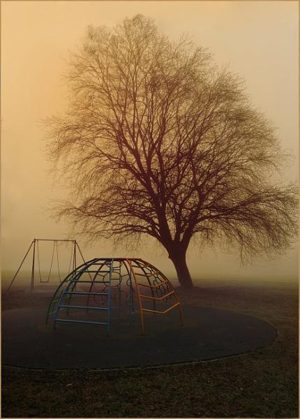 Foggy Village Green by Shamley