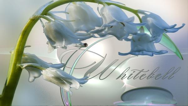 Untitled by ctxuk