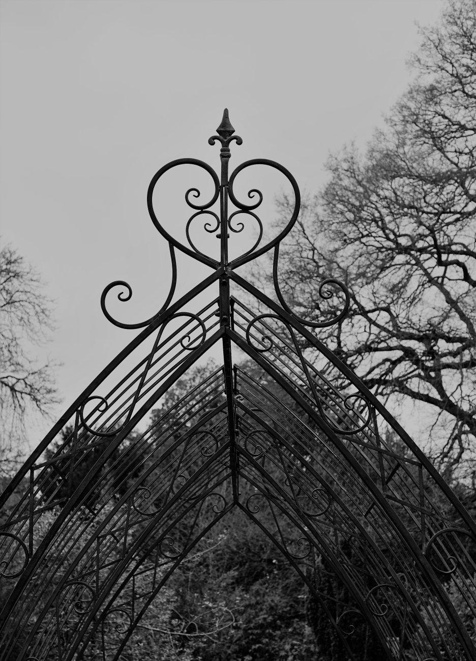 Overhead Romantic Heart