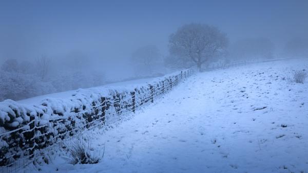 Local Winter Scene by Philpot