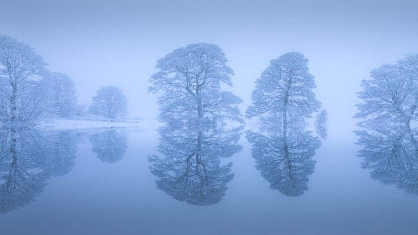 Blue Hour Winter Reflections by Philpot
