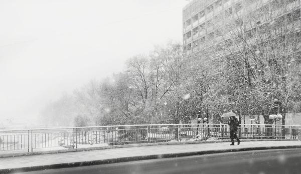 January XXVI by MileJanjic