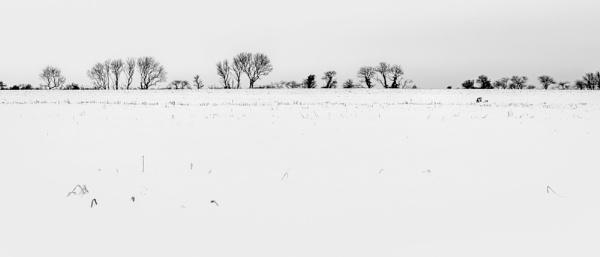 WINTER LANDSCAPE by mogobiker
