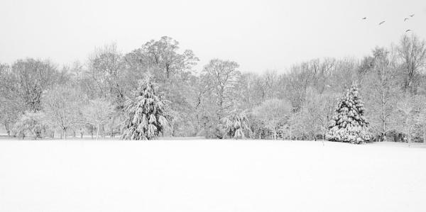 Winter wonderland by smartPhotography