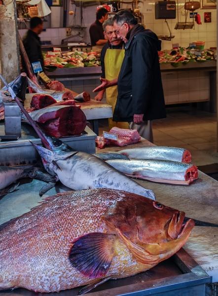 The Fish Shop by Xandru