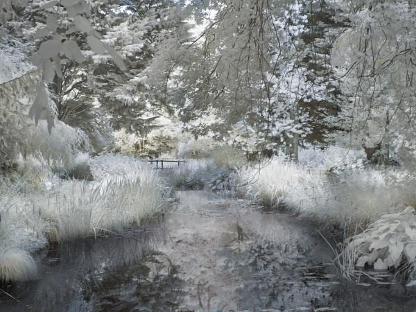 Gooderstone Water Garden - Infrared by Adee