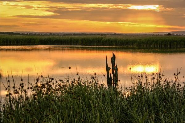 Marsh Sunrise by blrphotos