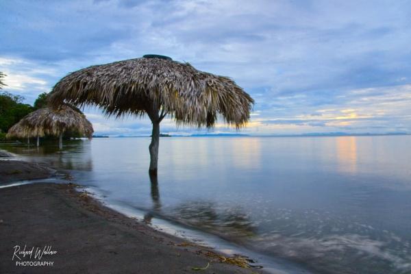 Isla de Ometepe by forestrich