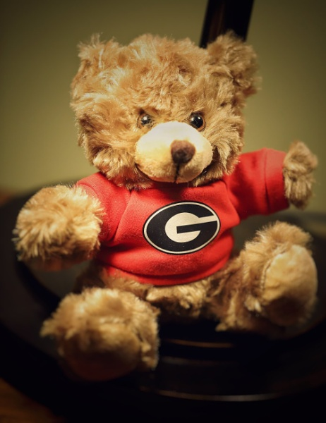 Teddy by Merlin_k